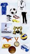 بانک اطلاعات فروشندگان لوازم ورزشی